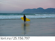 Купить «Surfer walking along beach, Muizenberg Beach, False Bay, near Cape Town, Western Cape, South Africa. July 2013.», фото № 25156797, снято 27 мая 2018 г. (c) Nature Picture Library / Фотобанк Лори
