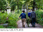 Купить «Friends of Tower Hamlets Cemetery Community Conservation volunteers carrying out conservation work to clear ivy from graveyard, and planting flowers as...», фото № 25171413, снято 20 августа 2018 г. (c) Nature Picture Library / Фотобанк Лори