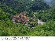 Купить «Saint Sauveur Sur-Tinee village, Mercantour National Park, Provence, France, July 2014.», фото № 25174197, снято 16 июля 2018 г. (c) Nature Picture Library / Фотобанк Лори