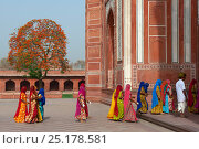 Купить «Taj Mahal, local women entering, Agra, Uttar Pradesh, India, April 2010.», фото № 25178581, снято 15 августа 2018 г. (c) Nature Picture Library / Фотобанк Лори