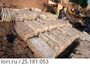Rock salt from the north of Mali, for sale at Mopti market. Mali, 2005-2006. Стоковое фото, фотограф Steve O. Taylor (GHF) / Nature Picture Library / Фотобанк Лори
