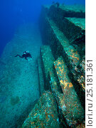 Купить «Diver examining the sandstone structure of the Yonaguni undersea monument, Yonaguni, East China Sea, Japan. February 2014.», фото № 25181361, снято 20 мая 2019 г. (c) Nature Picture Library / Фотобанк Лори