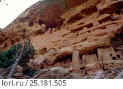 Ancient Tellem tombs, Bandiagara, Mali, 2005-2006. Стоковое фото, фотограф Steve O. Taylor (GHF) / Nature Picture Library / Фотобанк Лори