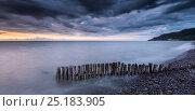 Купить «Weathered groynes in Bossington beach and view to Hurlstone Point, near Porlock, Exmoor, Somerset, UK. July 2013.», фото № 25183905, снято 16 июля 2018 г. (c) Nature Picture Library / Фотобанк Лори