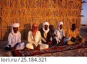 Купить «Toubou tribesmen, traditional warriors of the central Sahara. Northern Niger, 2005.», фото № 25184321, снято 17 августа 2018 г. (c) Nature Picture Library / Фотобанк Лори