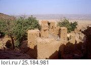 Dogon dwellings on escarpment. Mali, 2005-2006. Стоковое фото, фотограф Steve O. Taylor (GHF) / Nature Picture Library / Фотобанк Лори