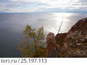 Купить «Shore of Olkhon Island, Lake Baikal, UNESCO World Heritage Site, Irkutsk Oblast, Siberia, Russia, September 2013 Taken for the Freshwater Project.», фото № 25197113, снято 20 января 2018 г. (c) Nature Picture Library / Фотобанк Лори