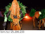 Купить «Traditional dance performed by Tanda people, Iemberem village, Cantanhez National Park, Guinea-Bissau, December 2013.», фото № 25200233, снято 9 июля 2020 г. (c) Nature Picture Library / Фотобанк Лори