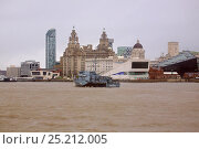 Купить «German mine-hunter 'Groemitz' arriving in Liverpool, with Royal Liver Buildings in background, for the Battle of the Atlantic 70th Anniversary commemoration...», фото № 25212005, снято 21 мая 2018 г. (c) Nature Picture Library / Фотобанк Лори