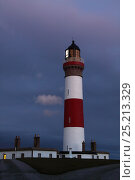 Buchan Ness lighthouse, Northeast Scotland. August 2013. All non-editorial uses must be cleared individually. Редакционное фото, фотограф Philip Stephen / Nature Picture Library / Фотобанк Лори