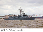 Купить «ORP General Tadeusz Kosciuszko arrives in Liverpool to be present in Liverpool for the Battle of the Atlantic 70th Anniversary commemoration (BOA 70) Liverpool...», фото № 25216533, снято 22 мая 2018 г. (c) Nature Picture Library / Фотобанк Лори