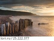 Купить «Sunset over Bossington Beach in Exmoor National Park, Somerset, England. July 2013.», фото № 25222377, снято 16 июля 2018 г. (c) Nature Picture Library / Фотобанк Лори
