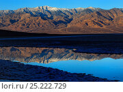 Telescope Peak reflected in pond at Badwater, Death Valley National Park, California, USA January 2013. Стоковое фото, фотограф Jouan Rius / Nature Picture Library / Фотобанк Лори