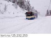 Купить «Bus driving through snow from Kuusamo, close to Ruka, Lapland, Finland», фото № 25232253, снято 20 мая 2019 г. (c) Nature Picture Library / Фотобанк Лори