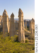 Купить «Phallic pillars known as Fairy Chimneys in the valley known as Love Valley near Goreme in Cappadocia, Anatolia, Turkey, 2008», фото № 25236061, снято 10 июля 2020 г. (c) Nature Picture Library / Фотобанк Лори