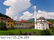 Купить «Mosque in the town of Konjic near Sarajevo, Bosnia and Herzegovina, Balkans 2007», фото № 25236289, снято 17 декабря 2018 г. (c) Nature Picture Library / Фотобанк Лори