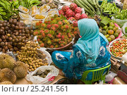 Купить «Women selling fruit and vegetables in the towns central market, Kota Bharu, Kelantan State, Malaysia 2008», фото № 25241561, снято 10 июля 2020 г. (c) Nature Picture Library / Фотобанк Лори