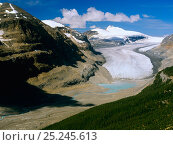 Купить «Saskatchewan Glacier and peaks in Banff National Park, Rocky Mountains, Alberta, Canada», фото № 25245613, снято 31 мая 2020 г. (c) Nature Picture Library / Фотобанк Лори