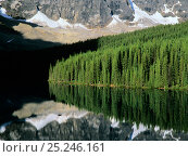 Купить «Mountain forest reflections on Moraine Lake, Banff National Park, Rocky Mountains, Alberta, Canada», фото № 25246161, снято 31 мая 2020 г. (c) Nature Picture Library / Фотобанк Лори