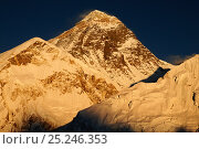 Everest (8848m) at sunset, Sagarmatha National Park (World Heritage UNESCO). Khumbu / Everest Region, Nepal, Himalaya, October 2011. Стоковое фото, фотограф Enrique Lopez-Tapia / Nature Picture Library / Фотобанк Лори