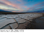 Salt formations in valley floor, Death Valley National Park, Mojave Desert, California, USA. Стоковое фото, фотограф Jack Dykinga / Nature Picture Library / Фотобанк Лори