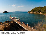 Купить «Tourists on jetty on Port Cros Island on the Côte d'Azur, France, August 2008.», фото № 25272989, снято 16 августа 2018 г. (c) Nature Picture Library / Фотобанк Лори