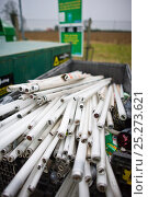 Купить «Fluorescent light tube recycling at a recycling centre, Gloucestershire, UK.», фото № 25273621, снято 22 августа 2018 г. (c) Nature Picture Library / Фотобанк Лори