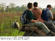 Купить «People on an elephant-back safari looking at a Greater One-horned / Indian / Asian One-horned Rhino (Rhinoceros unicornis). Vulnerable. Kasiranga National Park, Assam, India, April.», фото № 25279221, снято 21 июля 2018 г. (c) Nature Picture Library / Фотобанк Лори
