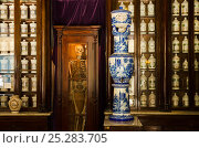 Купить «Old pharmacy in Old Havana, UNESCO World Heritage Site, capital of Cuba, Caribbean 2011», фото № 25283705, снято 22 мая 2018 г. (c) Nature Picture Library / Фотобанк Лори