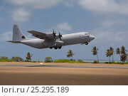 Купить «A Royal Australian Airforce Hercules C-130 taking off with vortices visible from the propeller blades.  Cocos-Keeling Island group, Australia, the Indian Ocean, November.», фото № 25295189, снято 16 августа 2018 г. (c) Nature Picture Library / Фотобанк Лори