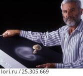 Купить «Photographer Yves Lanceau in his studio photographing spore dispersal pattern of False Death Cap fungus (Amanita citrina var. alba)», фото № 25305669, снято 19 июля 2018 г. (c) Nature Picture Library / Фотобанк Лори