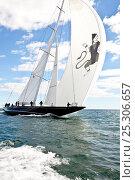 "Купить «J-class yacht ""Hanuman"" reaching under spinnaker during the Newport Bucket Regatta, Rhode Island, September 2010.», фото № 25306657, снято 19 января 2020 г. (c) Nature Picture Library / Фотобанк Лори"