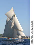 """Купить «""""Moonbeam IV"""" during race in Cannes Royal Regatta, France 2008. All non-editorial uses must be cleared individually.», фото № 25325525, снято 21 августа 2018 г. (c) Nature Picture Library / Фотобанк Лори"""