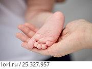 Купить «close up of newborn baby foot in mother hand», фото № 25327957, снято 23 ноября 2016 г. (c) Syda Productions / Фотобанк Лори