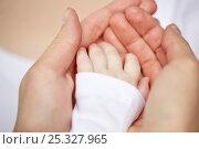 Купить «close up of mother and newborn baby hands», фото № 25327965, снято 23 ноября 2016 г. (c) Syda Productions / Фотобанк Лори