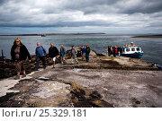 Купить «Visitors disembarking from ferry onto Inner Farne, Farne Islands, Northumberland, England, July 2010.», фото № 25329181, снято 14 августа 2018 г. (c) Nature Picture Library / Фотобанк Лори