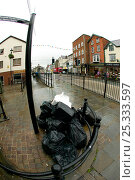 Купить «Uncollected council waste bags from businesses, in the streets of a small town. Wales, UK July 2008», фото № 25333597, снято 17 августа 2018 г. (c) Nature Picture Library / Фотобанк Лори