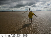 Купить «Traditional lave net fisherman (a method dating back at least 1,500 years) walking across mudflats. This Severn Estuary way of life is threatened by proposed...», фото № 25334809, снято 13 ноября 2018 г. (c) Nature Picture Library / Фотобанк Лори