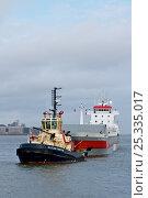 "Купить «Liverpool Tug ""Svitzer Bidstonug"" towing tanker, manoeuvring around midriver to enter Alfred Dock. Birkenhead, England, June 2010.», фото № 25335017, снято 17 июля 2018 г. (c) Nature Picture Library / Фотобанк Лори"