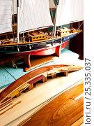Купить «Wooden model boats, including a half-hull, in the Grenadines, Caribbean. February 2010.», фото № 25335037, снято 25 июня 2019 г. (c) Nature Picture Library / Фотобанк Лори