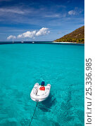 Купить «Inflatable tender towed behind a yacht in the Grenadines, Caribbean. February 2010.», фото № 25336985, снято 9 декабря 2019 г. (c) Nature Picture Library / Фотобанк Лори