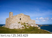 Купить «Blockhouse, remains of a 16th century gun tower protecting Old Grimsby harbour, Tresco, Isles of Scilly. December 2009.», фото № 25343429, снято 22 июля 2018 г. (c) Nature Picture Library / Фотобанк Лори