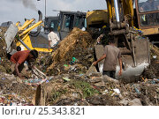 Купить «Children looking for recyclable objects in landfill site, Dhaka, Bangladesh, July 2008», фото № 25343821, снято 14 августа 2018 г. (c) Nature Picture Library / Фотобанк Лори