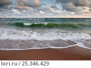Купить «Waves crashing onto beach, Baltic sea, Estonia,», фото № 25346429, снято 17 августа 2018 г. (c) Nature Picture Library / Фотобанк Лори