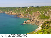 Купить «Petit Bot Bay, south-east coast of Guernsey, Channel Islands, May 2009.», фото № 25382405, снято 14 декабря 2017 г. (c) Nature Picture Library / Фотобанк Лори