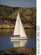 Купить «Hallberg-Rassy 372 cruising in archipelago around Orust, western Sweden, April 2009.», фото № 25382521, снято 20 сентября 2018 г. (c) Nature Picture Library / Фотобанк Лори