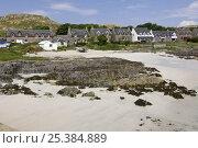 Купить «Beach front and cottages. Isle of Iona, Inner, Hebrides, Scotland, UK, 2008», фото № 25384889, снято 14 августа 2018 г. (c) Nature Picture Library / Фотобанк Лори