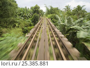 Купить «View of the railway lines from a 'skate' - a local form of transport in Manila, Philippines. A motorized platform that can hold up to 30 people and runs on the railway tracks.», фото № 25385881, снято 22 мая 2018 г. (c) Nature Picture Library / Фотобанк Лори