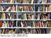 Купить «Библиотека, полки с книгами», фото № 25389913, снято 11 февраля 2017 г. (c) Victoria Demidova / Фотобанк Лори