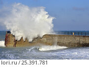 Купить «Wave crashing over jetty during storm at Saint-Valéry-en-Caux, Normandy, France, December 2008», фото № 25391781, снято 14 декабря 2017 г. (c) Nature Picture Library / Фотобанк Лори